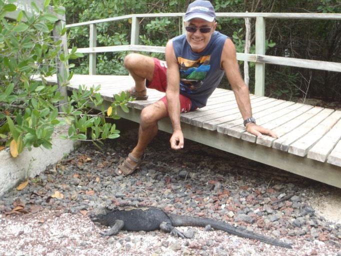 Iguanas camino a Las Grietas