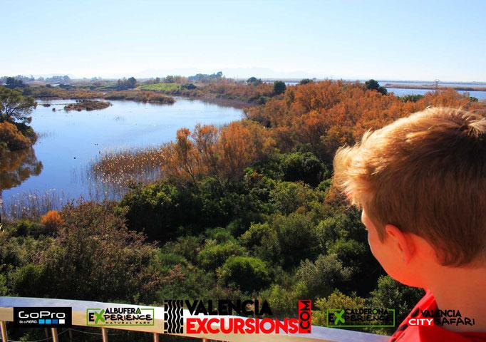 Vista de La Albufera en Albufera Experience 4x4 tour. Descubre la Albufera conduciendo un todoterreno co Valencia Excursions
