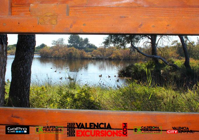 Mirador en el Parque Natural de L'Albufera con Albufera experience. Tour de aventura con 4x4 en Valencia