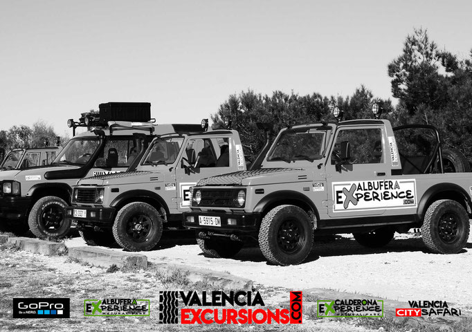 l'Albufera Natural Park excursions with jeeps and boat trip included. family friendly Excursions in Valencia at Natural reserves