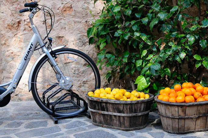 E-Bike Tramontana