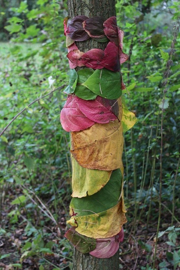 Landart, Baum mit Blättern umwickelt