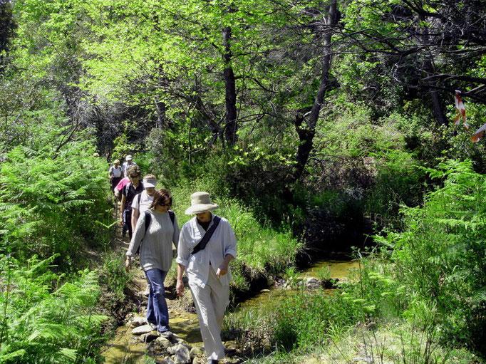 Wandern durch das Acheilabach Tal