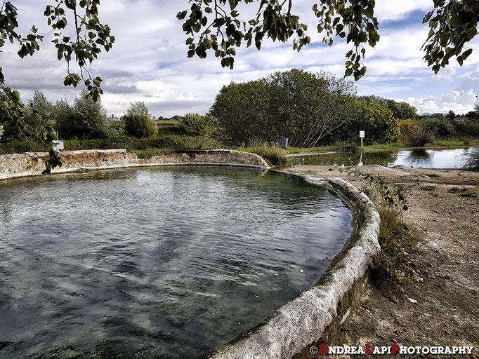 Parco del Bulicame (dove c'è la sorgente principale delle terme)