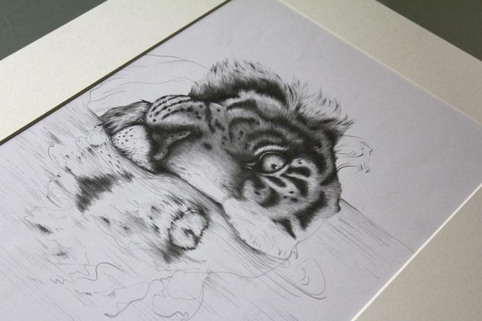 """""""Umgekippter Tiger"""" (November 2018), freie Arbeit, Bleistift auf Zeichenpapier"""