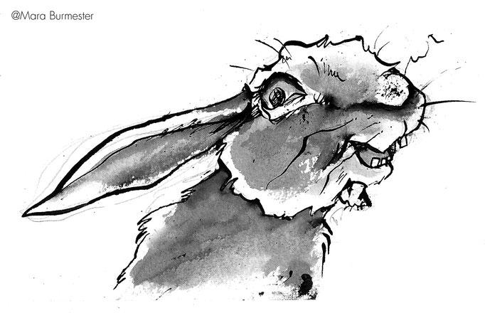 """""""Emma""""(2013), Illustration aus dem Buch """"Alfred""""(freies Projekt, nicht veröffentlicht), Tinte mit Stahlfeder und Pinsel"""