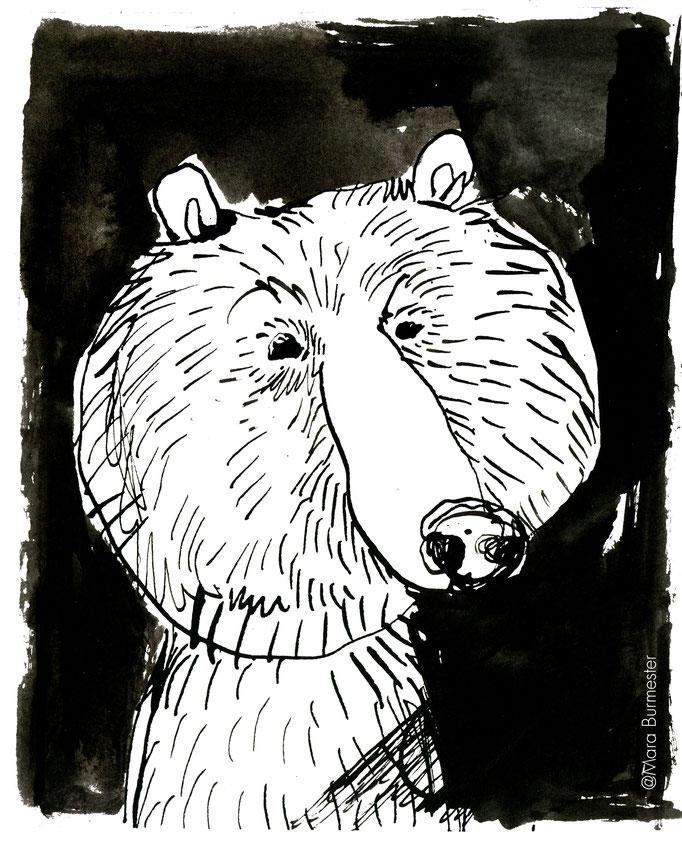 """""""Bär""""(März 2017), freie Arbeit aus der Serie """"Tierstudien"""", Tinte und Stahlfeder"""