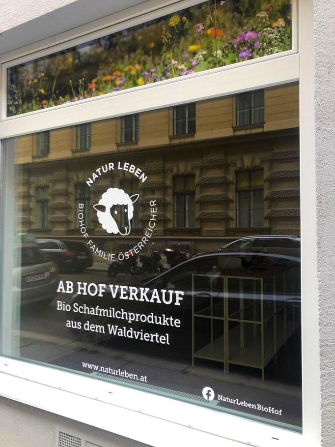 Ab Hof Verkauf mitten in Wien