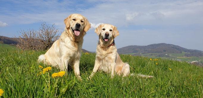 Caia und Luna beim Spaziergang