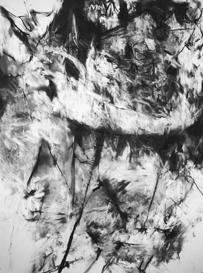 Horizon I - fusain sur papier - 75 x 55 cm - 2018