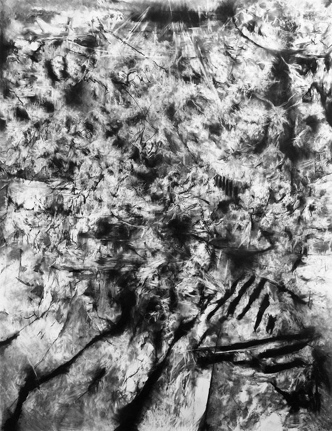 Les Champs - fusain sur papier - 200 x 150 cm - 2019