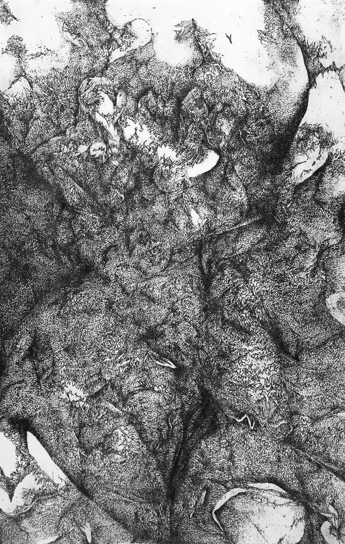 La Clémence de l'Oubli -eau forte -30 x 20 cm - 3e état - 2020