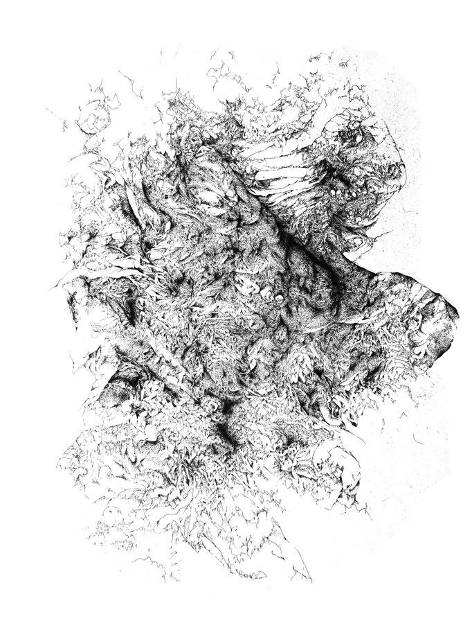 Se Meurt - eau forte - 50 x 40 cm - 2018