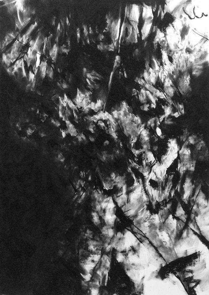 Sans titre - fusain sur papier - 100 x 70 cm - 2019