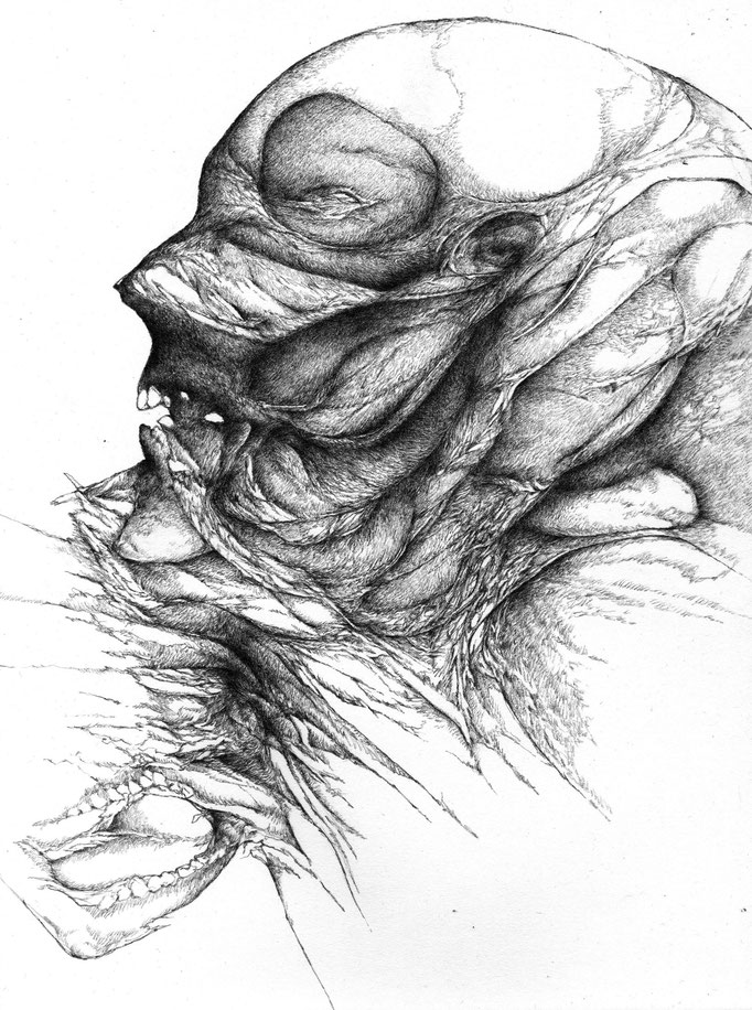 Fever II - graphite on paper - 30 x 21 - 2014