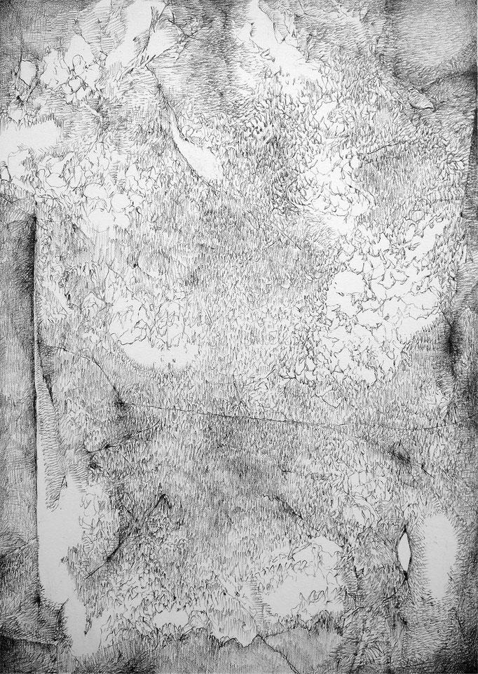 Tête Froide II - mine de plomb sur papier - 32 x 24 cm - 2019