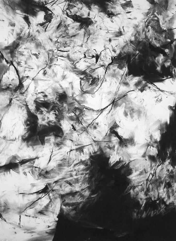 Sentinelle II - fusain sur papier - 75 x 55 cm - 2019