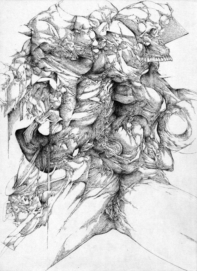 Découverte - mine de plomb sur papier - 42 x 30 cm - 2015