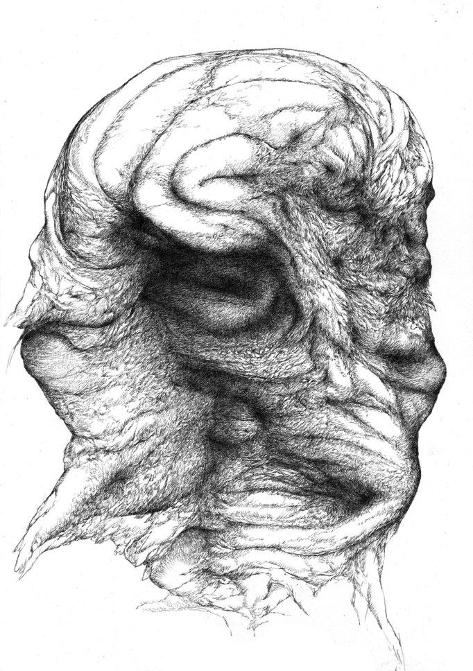 Fever I - graphite on paper - 30 x 21 - 2014