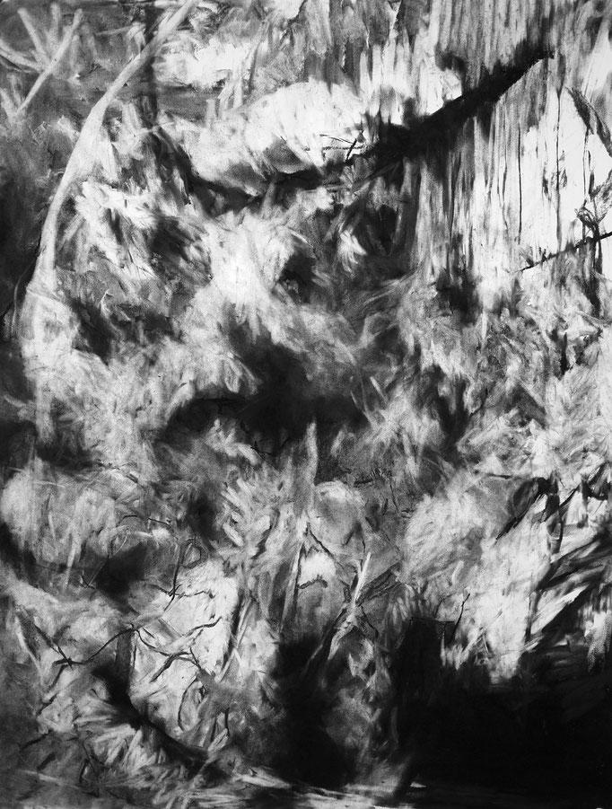 Horizon II - fusain sur papier - 75 x 55 cm - 2018