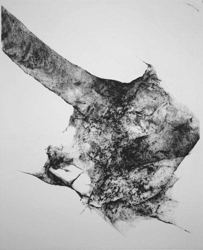It Grows On You II - pointe sèche - 33 x 25 cm - 2020