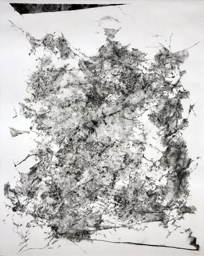Le Bruit des Peaux - pointe sèche - 50 x 40 cm - 2020