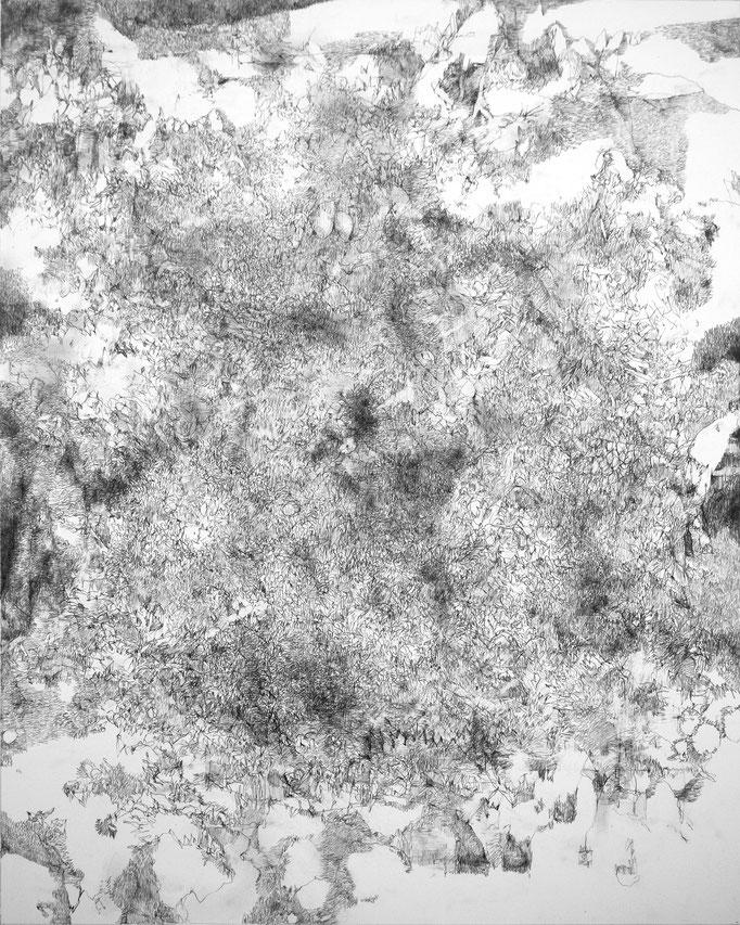 Sans Titre - mine de plomb - 70 x 57 cm - 2020
