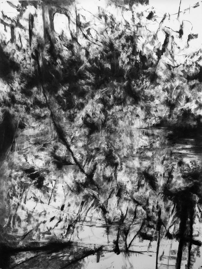 Sous le sommeil - fusain sur papier - 200 x 150 cm - 2018