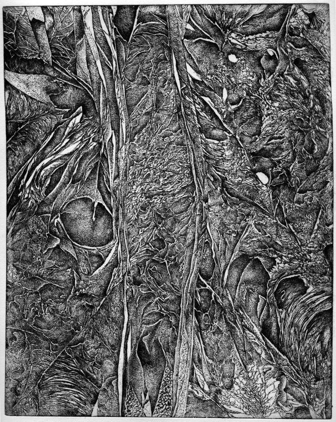 L'Epreuve -eau forte - 25 x 20 cm - 2013
