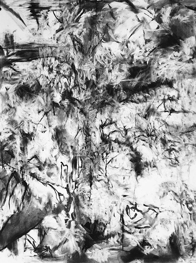 Le Vent Tourne - fusain sur papier - 65 x 50 cm - 2021