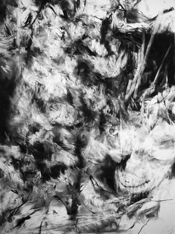 Horizon III - fusain sur papier - 75 x 55 cm - 2018