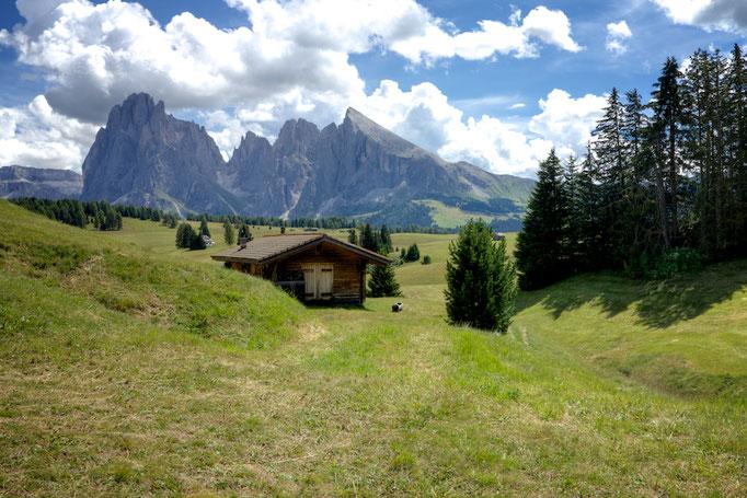 Seiser Alm,  Südtirol (Alto Adige), Italy