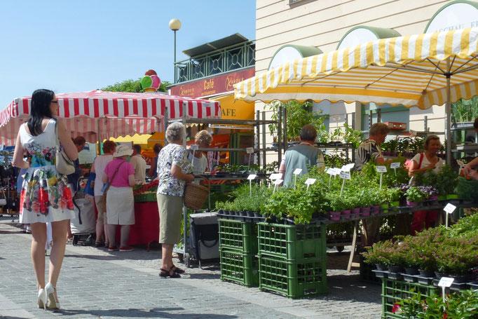 Wochenmarkt am Rathausplatz, Gmunden, © Thomas Köck