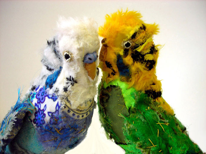 two budgerigars