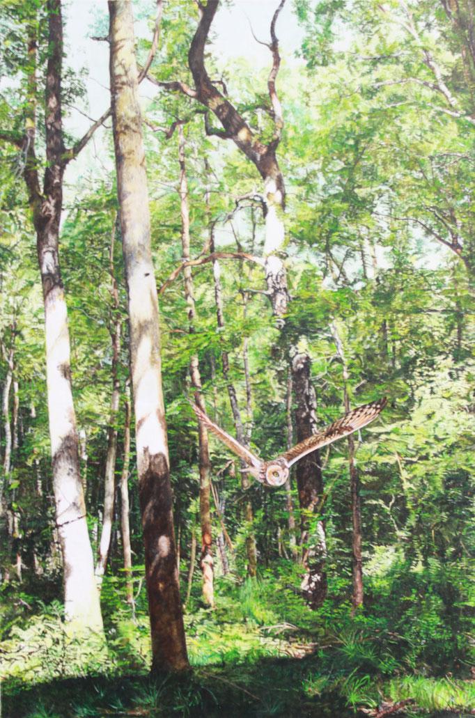 2-er Serie, Bild 1, Wald oberhalb Kreuzlingen: 80x120cm