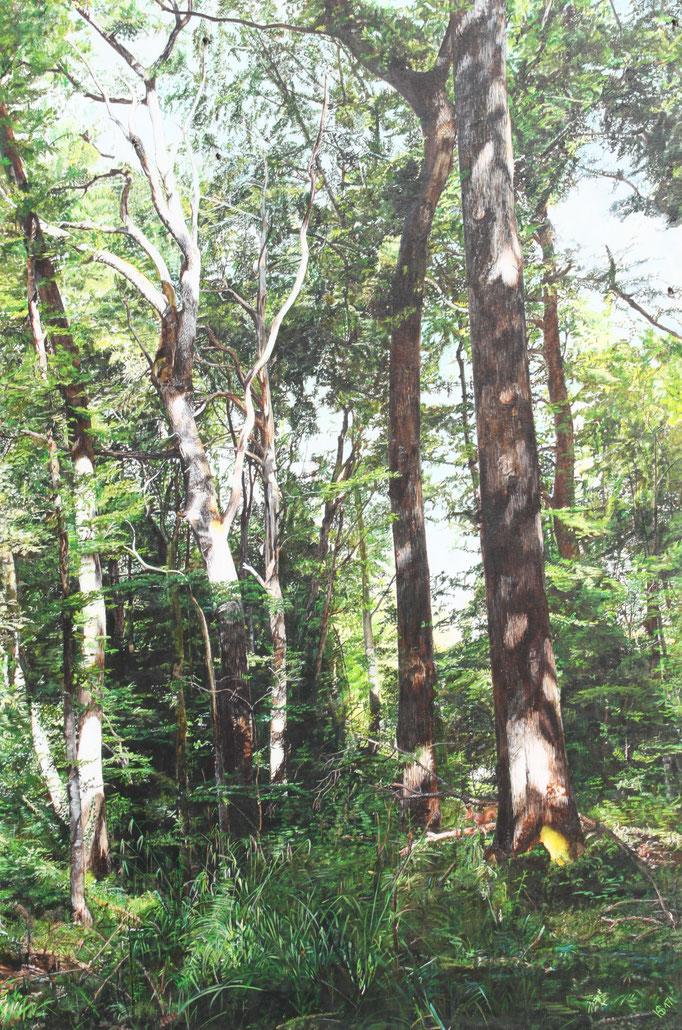 2-er Serie, Bild 2, Wald oberhalb Kreuzlingen: 80x120cm