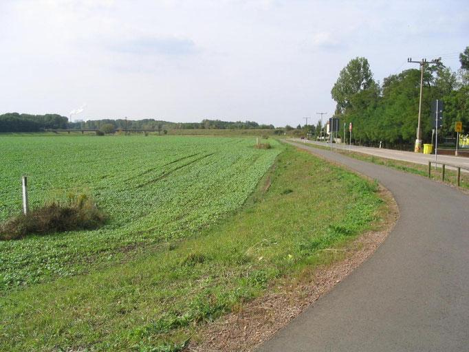 Baufläche bis zum Jahr 2011