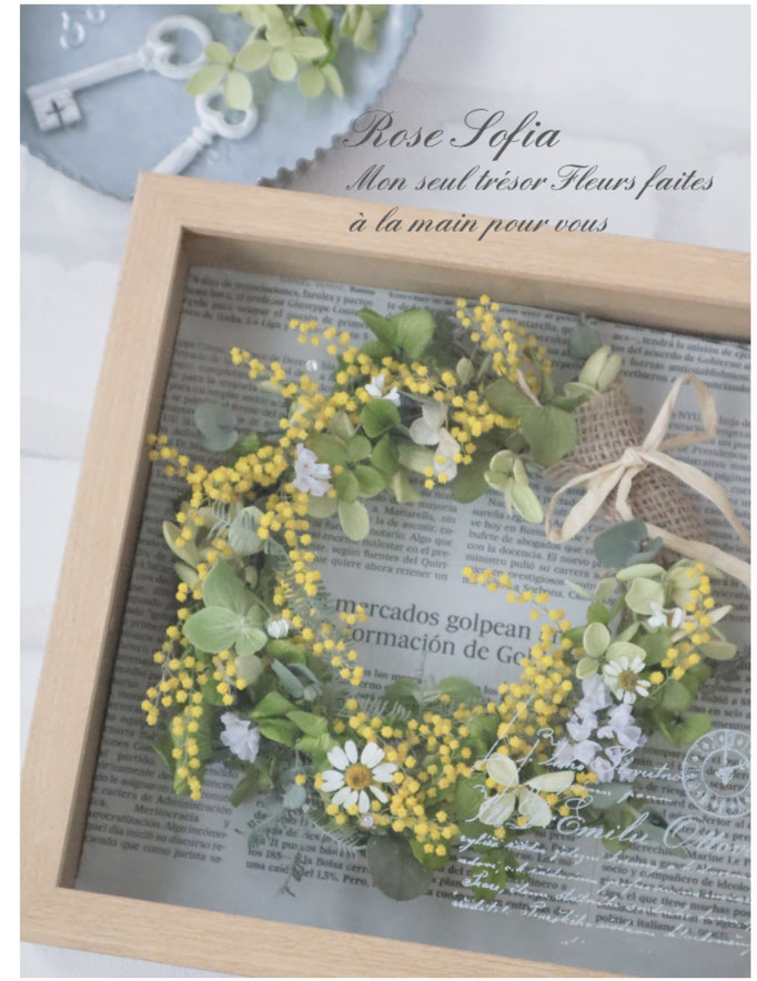 Mimosa wreath box 21.5x21.5xW5 ¥6,400+税★New