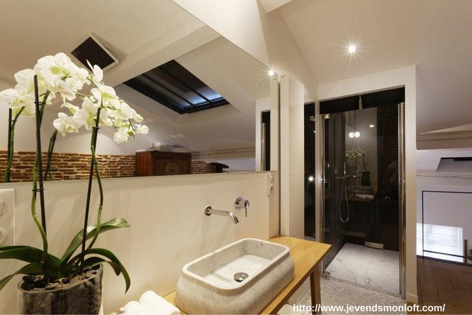 A vendre appartement Loft Duplex Carmes Dalbade Toulouse