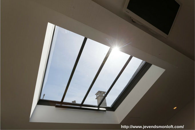 Particulier vend appartement T2 Loft Duplex Carmes Dalbade Toulouse