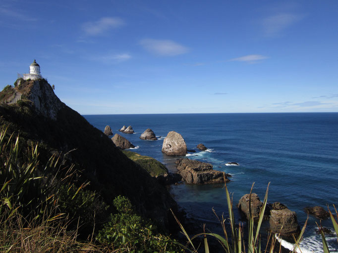 Nugget Point (the Catlins)