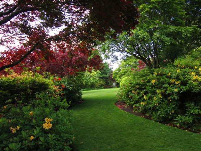 Dunedin Botanic Garden