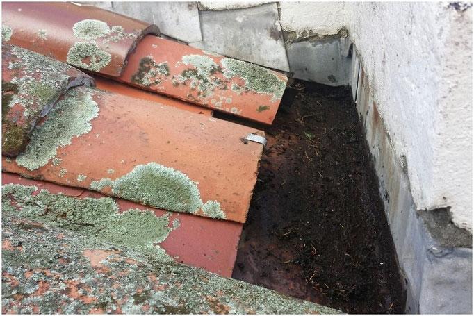 Rust box gutter
