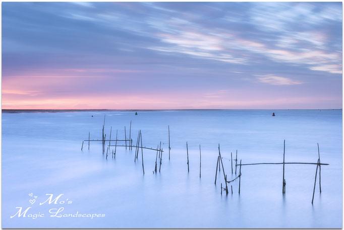 """""""Pastel Fishing Poles"""" (2017)"""