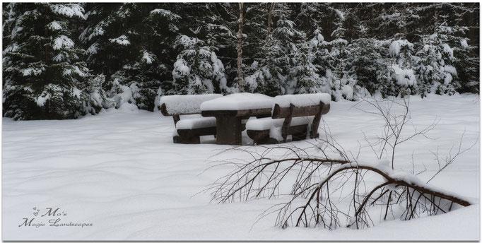 """Snow Blanket"" (2013)"