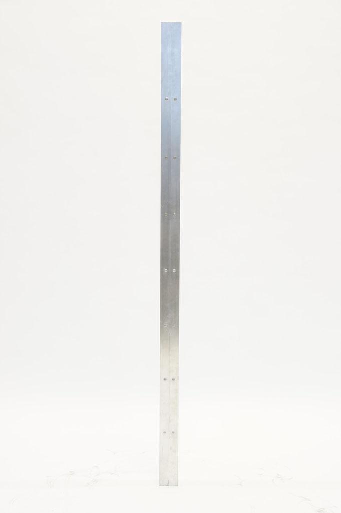 Faltleiter (Prototyp 2009)