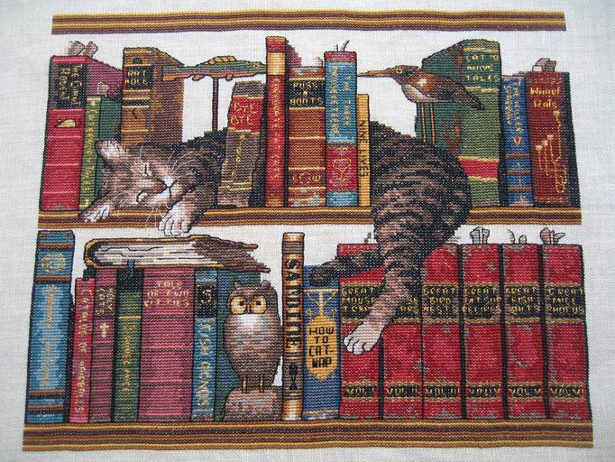 Le chat -© dr