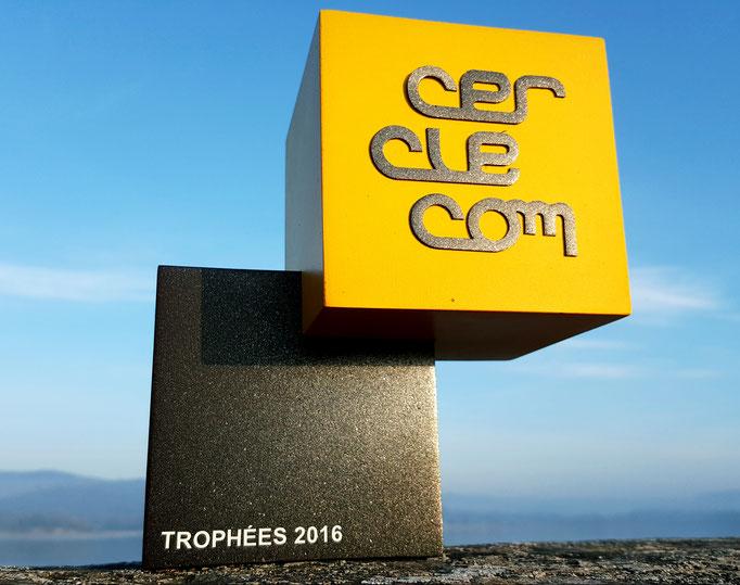 Trophées Cerclecom 2017 création réalisation Hervé Arnoul.