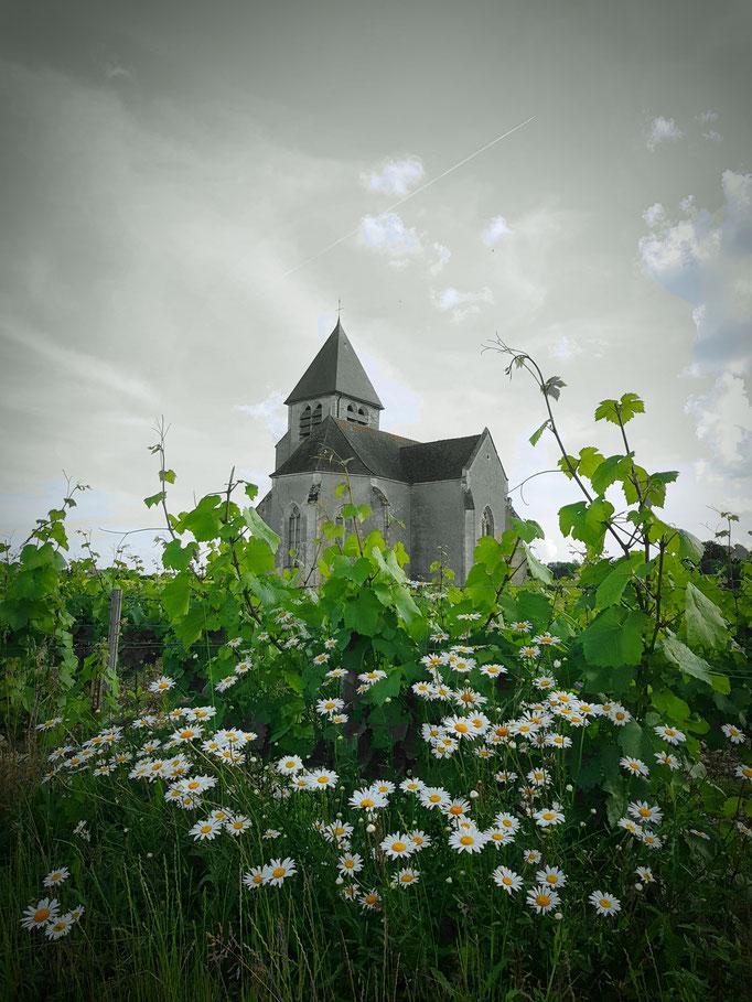 Suspensions fantastiques Domaine vitivole Brocard, Creation et réalisations Hervé Arnoul: Domaine.