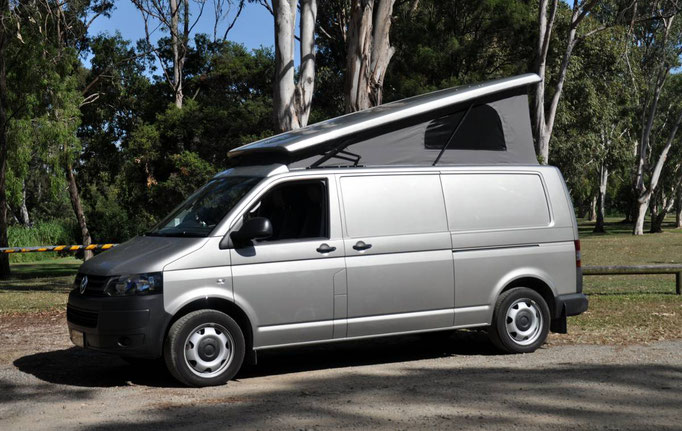 Reimo roof LWB T5